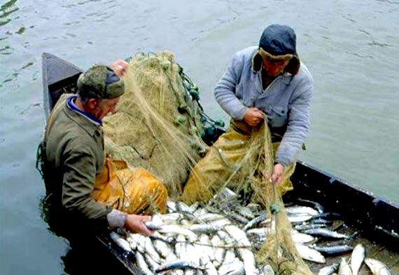 работать в рыболовном