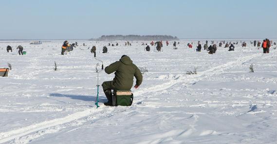 Рыбинская рыбалка