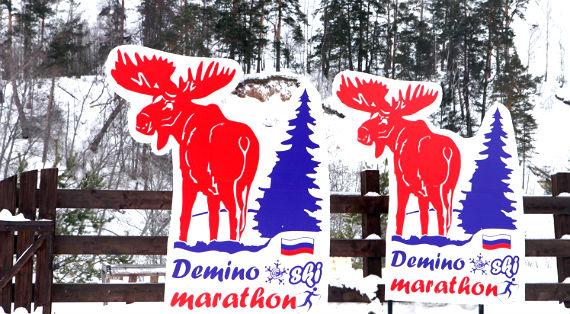 Деминский марафон, Рыбинск