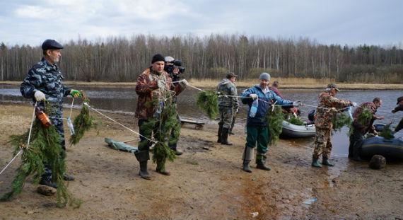 установке нерестилищ на Рыбинском водохранилище