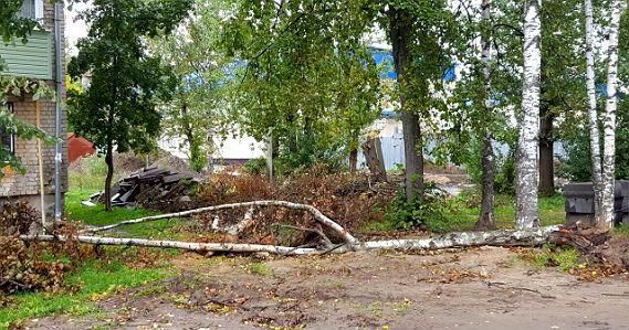 ремонт двора в Рыбинске