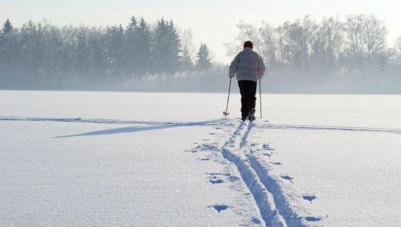 лыжня в Рыбинске