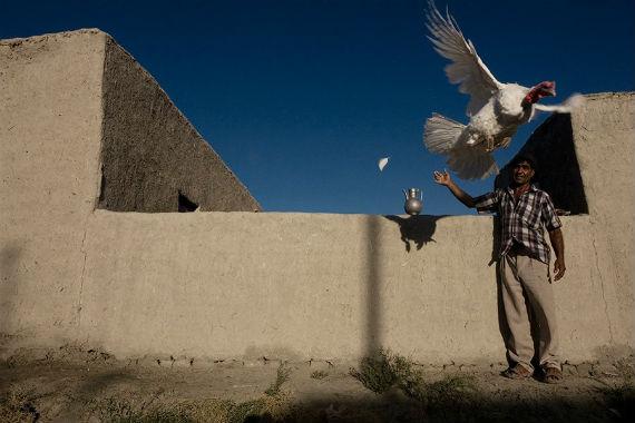 фотовыставка Анзора Бухарского в Рыбинске