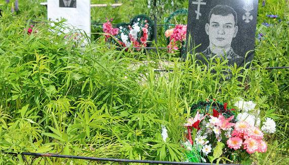 такой могила Денисовых была месяц назад