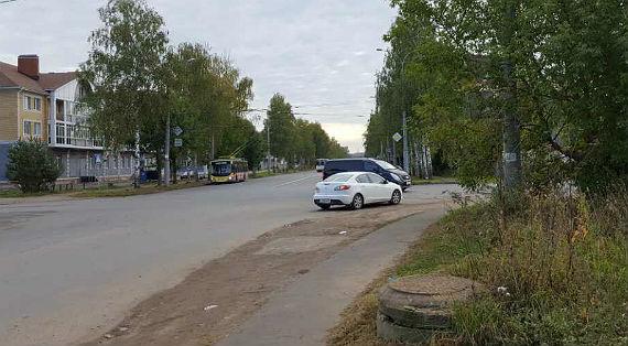 Даже дорожные знаки на проспекте Серова были закрыты кустами