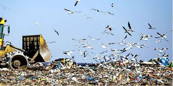 мусор скоково